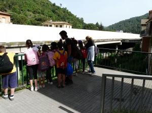 Observant la ocupació de la llera del riu Congost al Figaró-Montmany